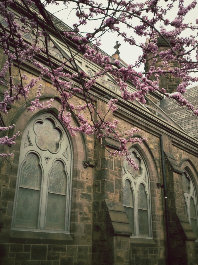 church-easter-tree