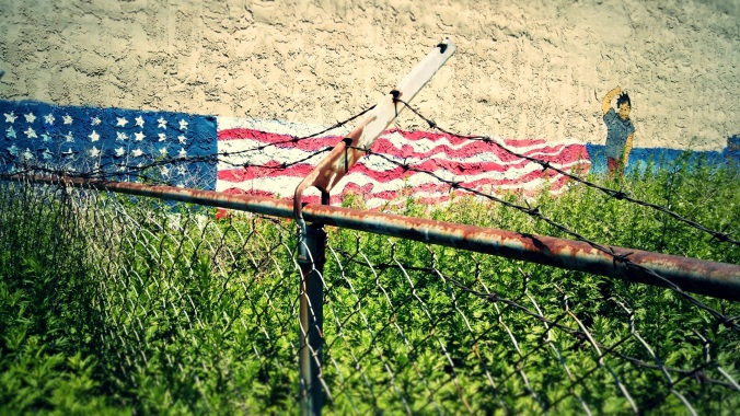 barbed-liberty-flag-wall