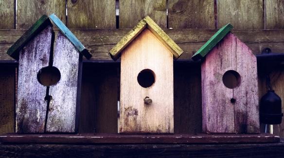 birdhouse-show