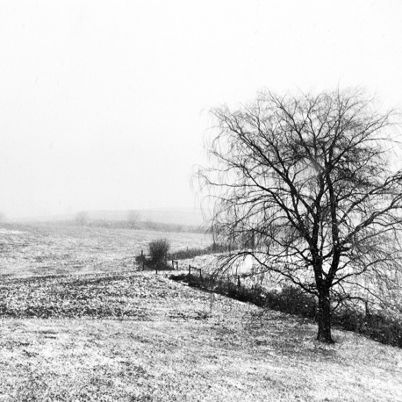 yoder-farm-bw-snow-instagram