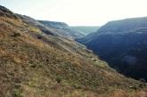 Golan Heights