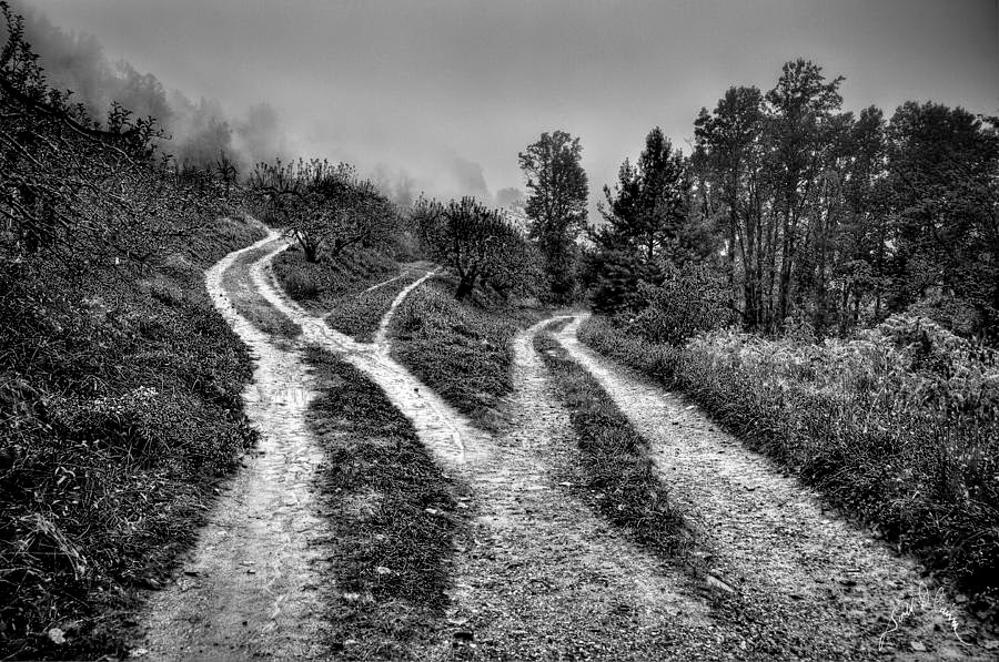 bw-three-paths-meet-williams-cairns-photography-llc