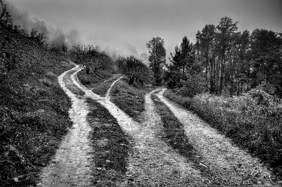 bw-three-paths-meet-williams-cairns-photography-llc